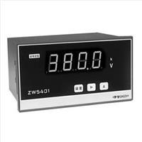 ZW5402交流电流表