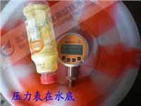 防雨淋精密数字压力表 CKY-2003