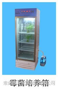 霉菌培养箱 MHP-100系列