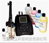 310P-06A 台式纯水pH套装 310P-06A