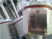 隔爆式鎧裝熱電偶 WRNB-440