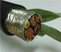 電力電纜,變頻電纜 ZR-BPVVP2P0.6/1KV3*70+3*16