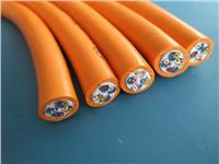氟塑料絕緣硅橡膠護套電力電纜 ZR-F46(FG)3*4+1*2.5