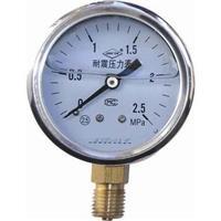 耐震壓力表 YN-150BF