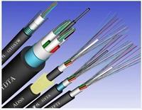 10芯單模光纜GYXTW-10b1 GYXTW-10b1