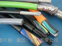 防爆型雙芯絞合屏蔽控制電纜 ZA-ia-DJFPVRP、ZA-ia-DJFVRP