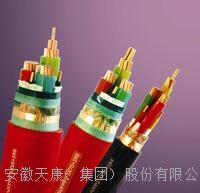 BPYJVP2R  ZR-BPYJVTP2-0.6/1KV 安徽天康供應變頻電纜 BPYJVP2R、BPYJVTP2-0.6/1KV