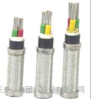 CEF80/SA船用電纜 CEF80/SA\300/500V\7×2.5mm2