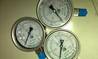 不銹鋼耐震壓力表 YTN-100