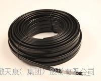 管道防凍恒溫保溫防腐電伴熱帶 ZR25DXW2-P