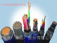 天康集團ZRC-DJFP3VP3R32計算機電纜
