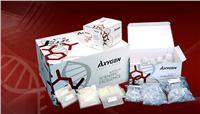 总RNA中量制备试剂盒 AP-MD-MS-RNA-10