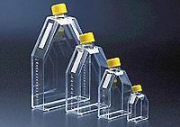 75cm正方斜口细胞培养瓶  orj-1648
