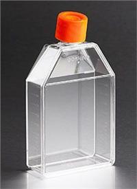 175cm2培养瓶 orj-16472