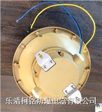 SBF6102吸頂式免維護燈 SBF6102-YQL40