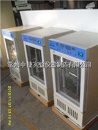霉菌培养箱 MJX-250