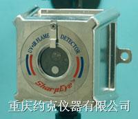 微型紫/红外火焰探测器 20/20ML
