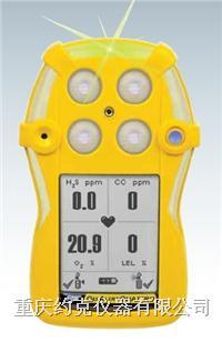 多种气体检测仪 QT-4
