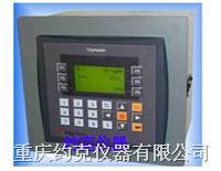 微量氧微水分析仪 16TDP