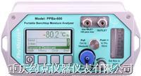 便携式露点仪 DPT-600