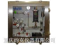 在线氢气分析仪采样系统 H2SS-700系列