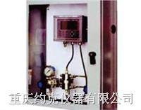 在线氢气分析仪 CHA