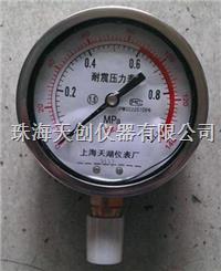 供应上海天湖YN-100 1MPa带校准证书耐震压力表 YN-100