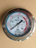 上海天湖Y-100轴向耐震压力表YN-100ZT YN-100ZT
