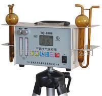 TQ-1000双气路有害气体大气采样器 TQ-1000
