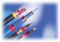 计算机电缆用控制电缆 JYJV,JYJVR,JVPV,DJVPV,DJVVP,DJYVP等