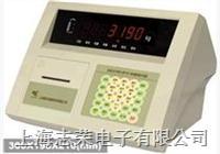 XK3190-A12+E,XK3190—A1+計數稱, XK3190—A6計價稱, XK3190—A7電子平臺秤 XK3190-A12+E