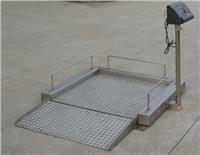 信丰轮椅秤,全南座椅秤,大余轮椅电子秤 SCS