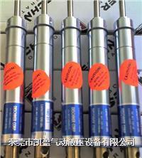美国白马精密稳速器 1002-31-1/2,5002-31-4,1002-31-1,1002-31-2,1002-31-