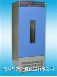 数显光照培养箱250D 数显光照培养箱250D