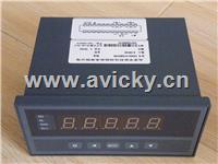 转速、线速、频率测量控制仪 XSM