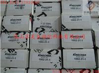 1002-31-3白马稳速器,DESCHNER KINECHEK白马缓冲器,DESCHNER KINECHEK海马稳速器,DESCHNER稳速器