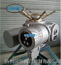 电动阀电气控制头 DZW60-24-A00-WK