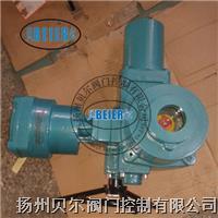 防爆型电动装置 QC120-1B