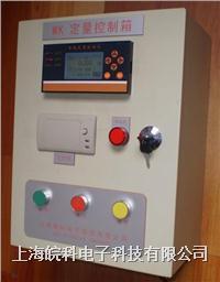 高精度定量注料系统
