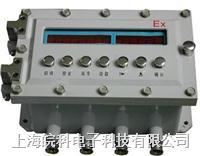 DGX1000防爆定量控制箱