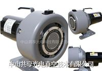 Agilent Varian渦旋式干泵TriScroll 300  Varian TriScroll 300
