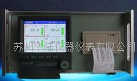 带打印机无纸记录仪 HLWZD2000