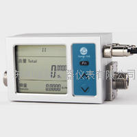 HLB氮气流量计 HLB12,19