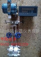 HLLG蒸汽流量计 HLLG10-1600