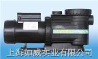 新款泳池循環水泵 熱水循環水泵
