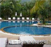 別墅游泳池 室外泳池