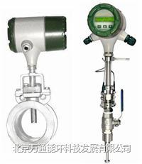 VT200热式气体质量流量计 VT200热式气体质量流量计
