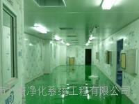 广州体外诊断试剂GMP车间装修