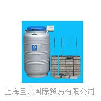 Taylor-Wharton LS系列液氮罐_生物液氮储存罐报价