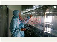 洁净棚 各种型号、级别净化洁净棚生产厂家 百级净化棚安装